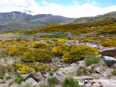 Parque Regional Sierra de Gredos - Laguna Grande de Gredos;grupo de senderismo madrid;viajes puente